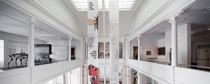 Fotografía de João Morgado de la Exposición 'Memória da Politécnica', cedida por el MUHNAC a sieteLisboas.