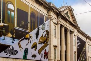 Museo Nacional de Historia Natural y de la Ciencia (MUHNAC)