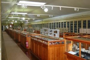 Museo Geológico (<em>Museu Geológico</em>)