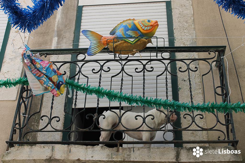 Fotografía toma en el 'Bairro da Madragoa' por sieteLisboas.
