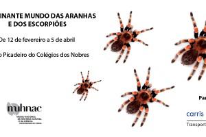 Exposición de Arañas y Escorpiones – Muhnac